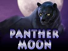 Игровой аппарат Panther Moon