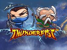 Играть в платном зале в аппарат Thunderfist